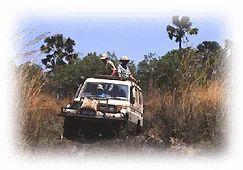 Wild Life And Safari Tour