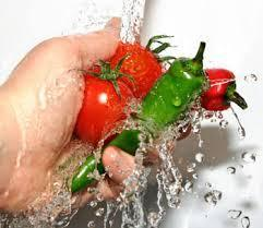 Hygienic Home Prepared Food Services