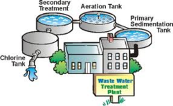 Waste Water Treatment By Organic
