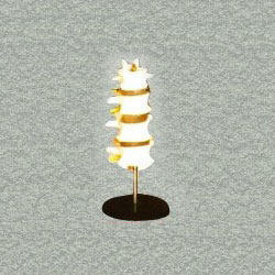 Lumbar Set (4Pcs) Models