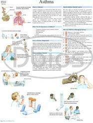 Pulmonary Disease Charts