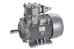 LHP Flame Proof (FLP)Motor