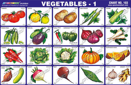 Vegetable Chart Halflifetrinfo