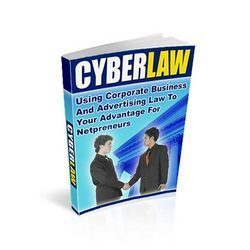 Cyber Law Services