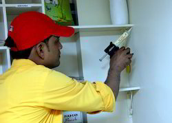 Pest Control Gel Treatment