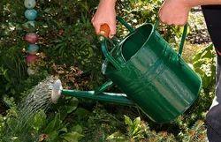 garden watering can - Garden Watering Can
