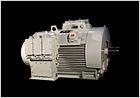 Energy Efficient Motors
