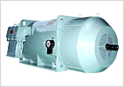Motors for Hazardous Areas (HV)