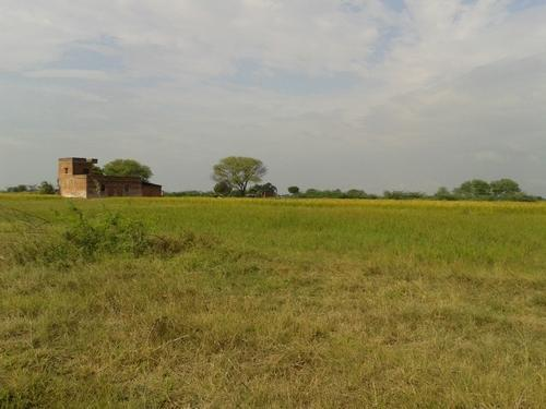 200 Acres Agriculture Land in Budaun, Civile Lines by Ganga