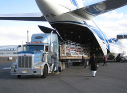 Global Freight Management