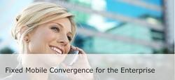Fixed Mobile Convergence Services