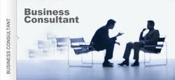 Business, Finance & Process Consulting