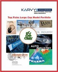 Top Picks Large Cap Model Portfolio