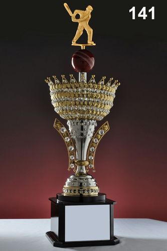 Cricket Trophy At Rs 4000 Piece