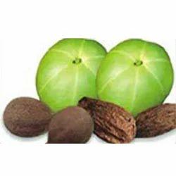 Triphala Herbal Extract 50%
