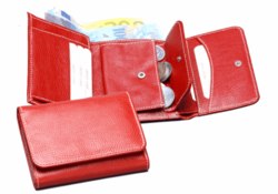 Ladies Leather Wallets and Purses