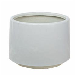 225 & Artificial White Flower Pot