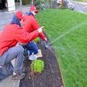 Landscape Irrigation Designing