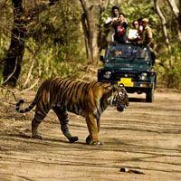 Delhi - Nainital - Ranikhet Tour Package