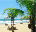 Relaxing Beach Vacation in Goa Tour