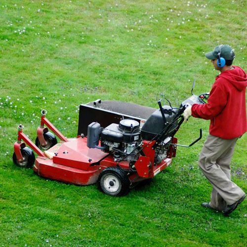 Lawn Maintenance Services In Delhi ल न म ट न स सर व स द ल ल