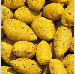 Yellow Turmeric Finger