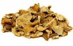 Dry Mushroom Oyster