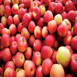 essay writing about apple fruit This is a descriptive essay on an apple we were presented with in class the parameters were that the essay have two paragraphs, the first being descriptive and the seconds being about the.