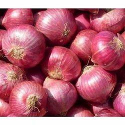 10 kg Fresh Onions, Packaging Type: PP Bag