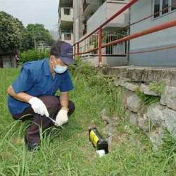 Rodent Control Services in Mumbai by Advance FMS & Security