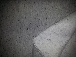 Fleece Fabrics (Naps)