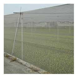 White HDPE Agro Insect Net, For Agriculture, Size: 2.50 Mtr To 5.20mtr