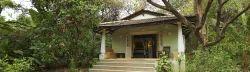 Villa Desert Marigold