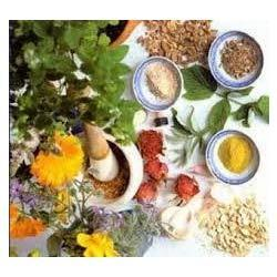 Food Farm And Herbal Product Testing Services