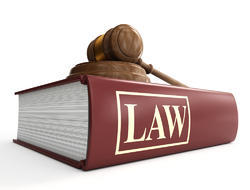 Company Law Matters Services