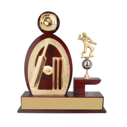 Wooden Cricket Award
