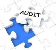 Stock Audit Service