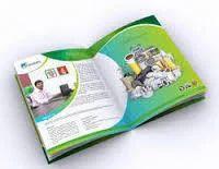 Brochure Designing & Printing Service