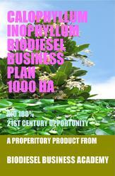 Calophyllum inophyllum Biodiesel Business Plan 1000 ha