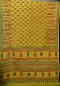 Multi Border Saree