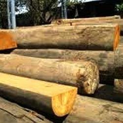 Wood Log In Bengaluru Karnataka India Indiamart