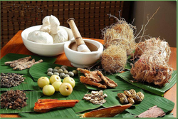 Ayurveda Health Tourism