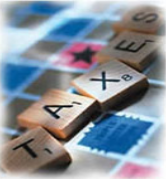 Taxation Software (For CA & Tax Practitioner)