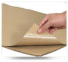 Poly Coated Papers