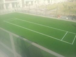 Cricket Turf Synthetic