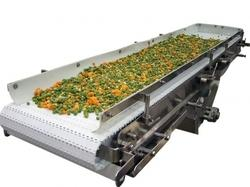 Vegetable Wash Conveyors