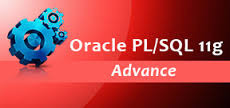 Oracle and SQL Course