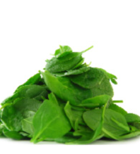IQF Spinach Leaves