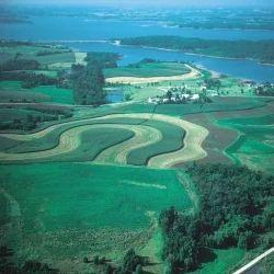 Land Conversion Assistance