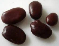 Bauhinia Seeds